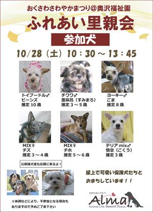 20171028okusawa